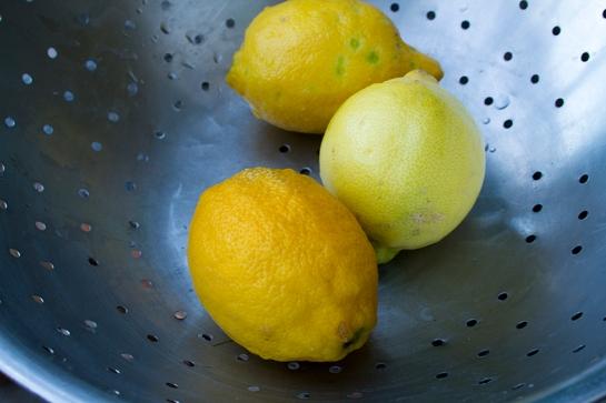 Oranges_Lemons5
