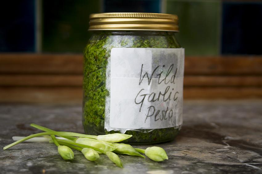 Wild Garlic and Hazelnut Pesto
