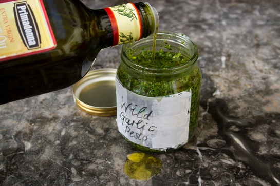 Wild_Garlic_Pesto3