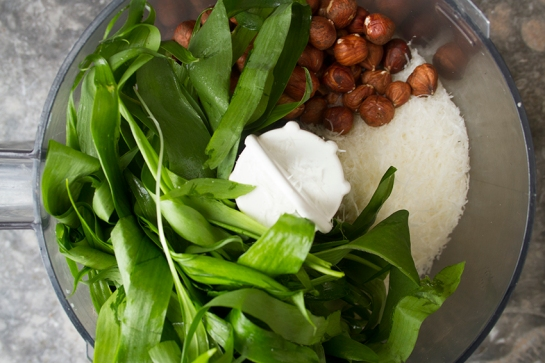 Wild_Garlic_Pesto6